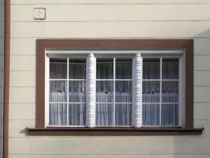 Window Pane Dividers
