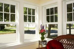 Paint windows